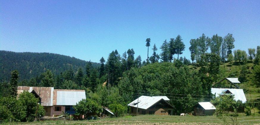 A Neglected Village | The Legitimate