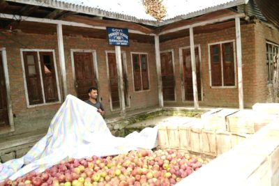 Rationalization Policy: Govt School Turns Fruit Packing Store In South Kashmir Village