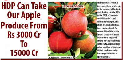 HDP Can Take Our Apple Produce From Rs 3000 Cr To 15000 Cr