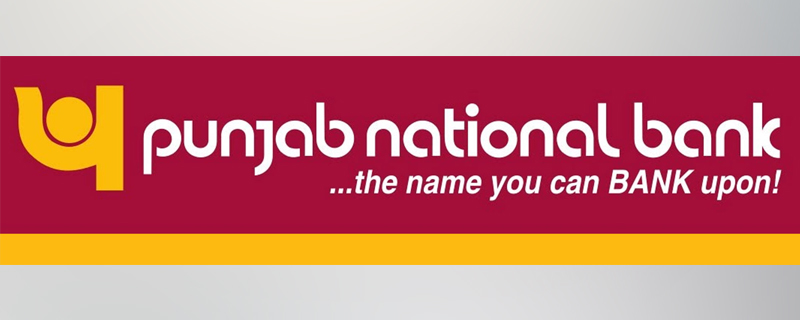 Cashmere Craft Establishment Files Defamation Suit Against Punjab National  Bank | The Legitimate