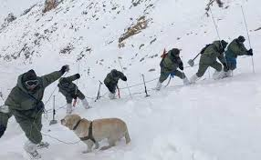Khardung La Avalanche: Two More Bodies Recovered, Toll Seven